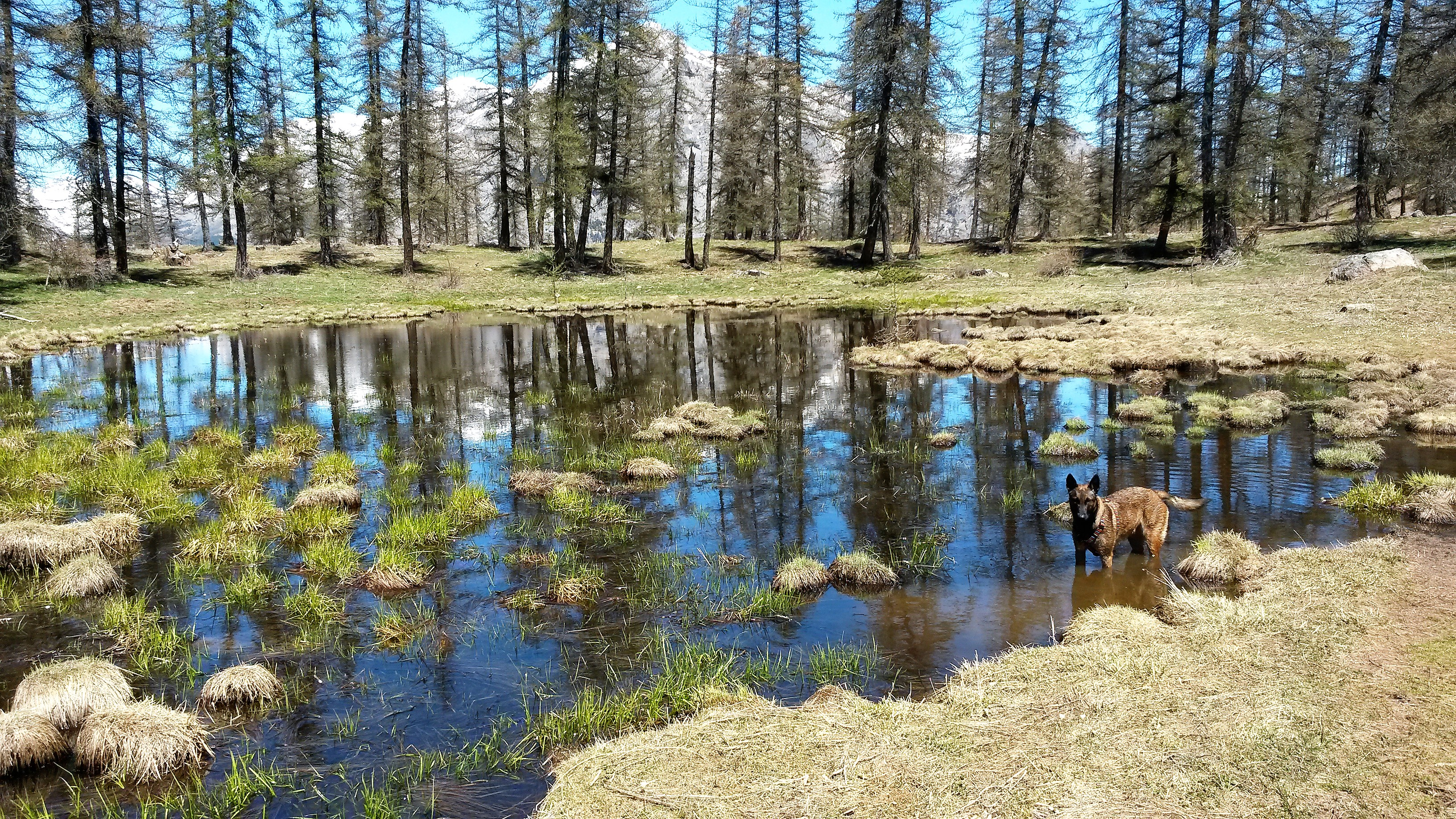 lac d'altitude